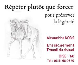 Répéter plutôt que forcer pour préserver la légèreté - A.Nobis Enseignement et travail du cheval