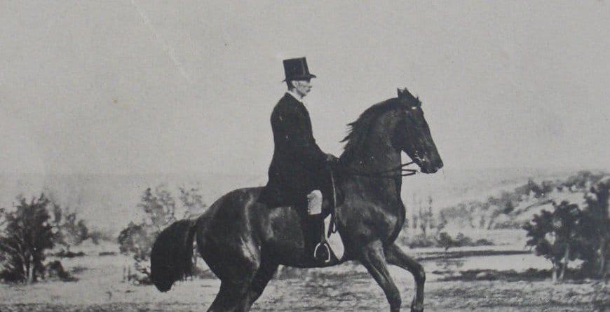 Pourquoi l'équitation c'était mieux avant ?